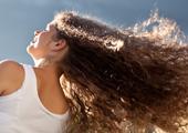 Lausfrei Haarshampoo mit insektifugen ätherischen Ölen