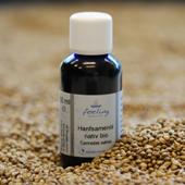Hanfsamenöl nativ bio Cannabis sativa